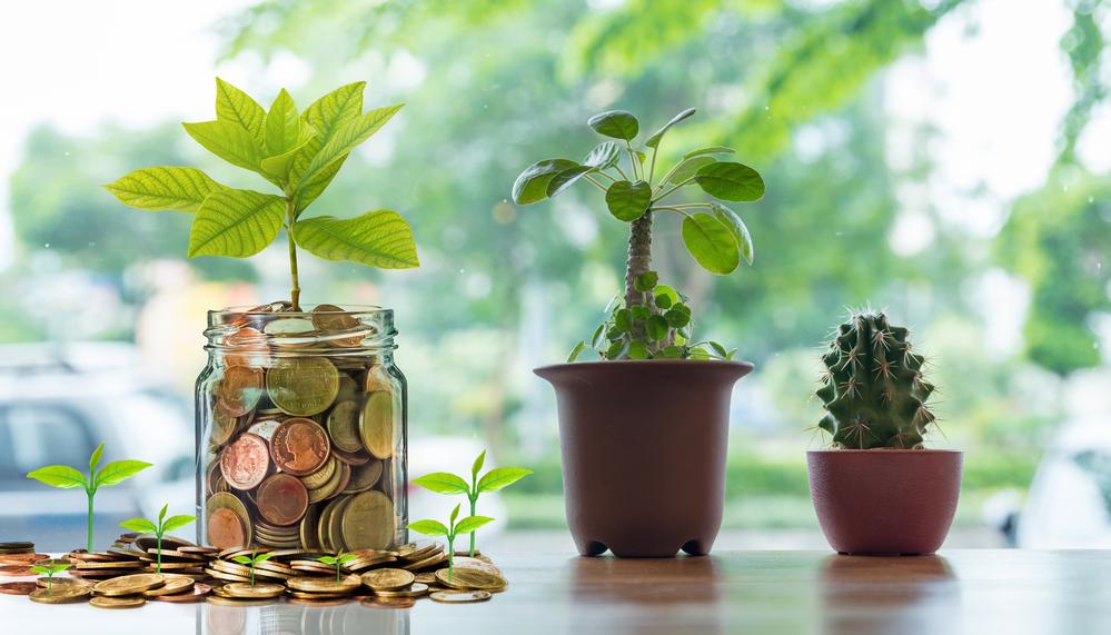 Druhý pilier: 3 dôchodkové fondy, v ktorých sa oplatí sporiť